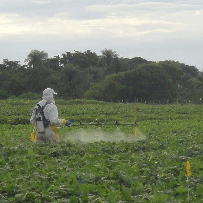 Mecanismo de ação dos defensivos agrícolas