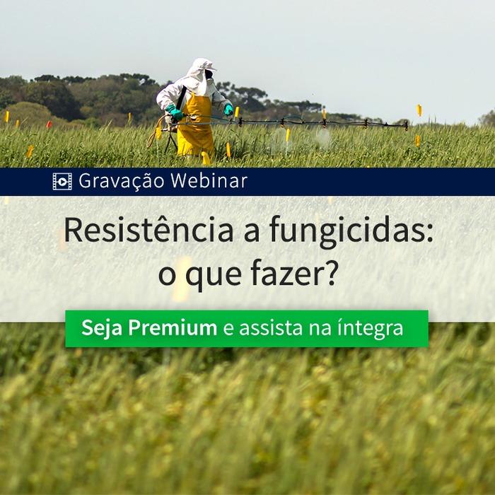 Resistência a fungicidas: o que fazer?