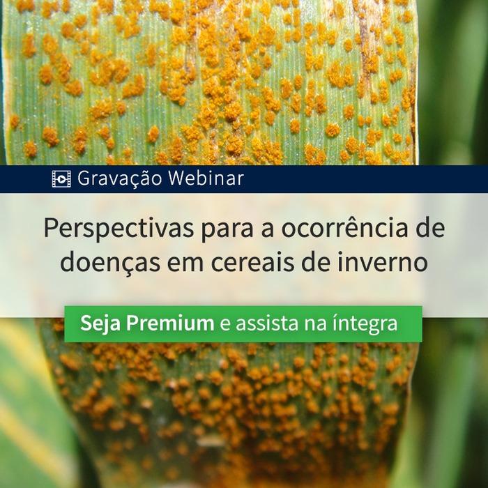 Perspectivas para a ocorrência de doenças em cereais de inverno