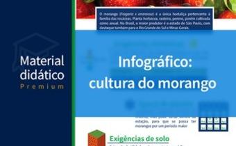 A cultura do morango