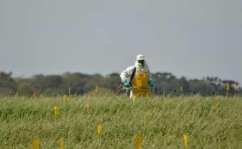 [Gravação do Webinar] Definição do residual de controle de fungicidas