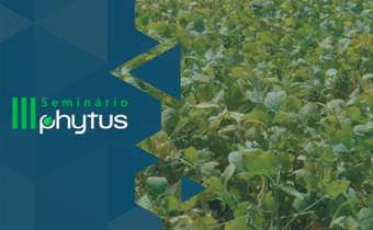 Dessecação na pré-colheita da soja: riscos e cuidados
