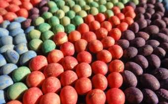 Importância do produto sistêmico no tratamento de sementes