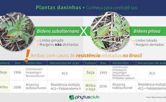 Diferenciação de espécies de<em> Bidens</em> e resistência a herbicidas