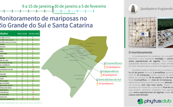 Monitoramento de mariposas no RS e SC