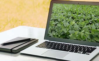 [Slides do Webinar] Ajuste seu programa de controle em função da cultivar