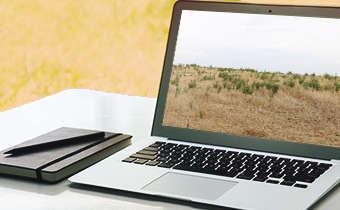 Slides do webinar Controle de plantas daninhas resistentes em pré-semeadura de ...