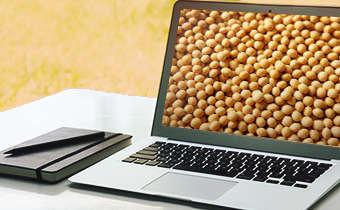 Slides do webinar Doenças iniciais em soja: TS químico e biológico