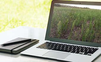 [Slides do Webinar]Manejo de plantas daninhas em soja e importância de herbicidas pré-emergentes