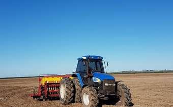 Você sabe quais são os sistemas para o cultivo de arroz irrigado?